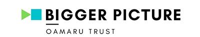 Bigger Picture Oamaru Logo
